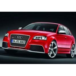 Audi RS3 2.5 TFSI 340hk 2011-2012