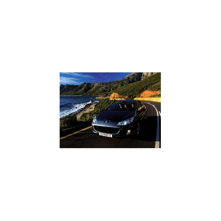 Peugeot 407 2.2 163hk 2005-2009