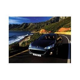 Peugeot 407 3.0 V6 211hk 2004-2009